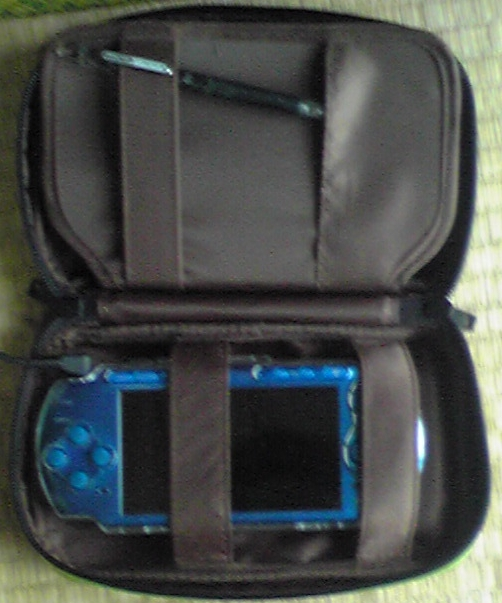 psp-case006.jpg