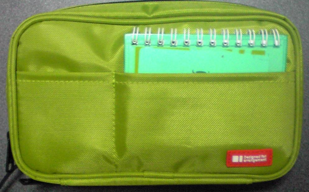 psp-case002.jpg